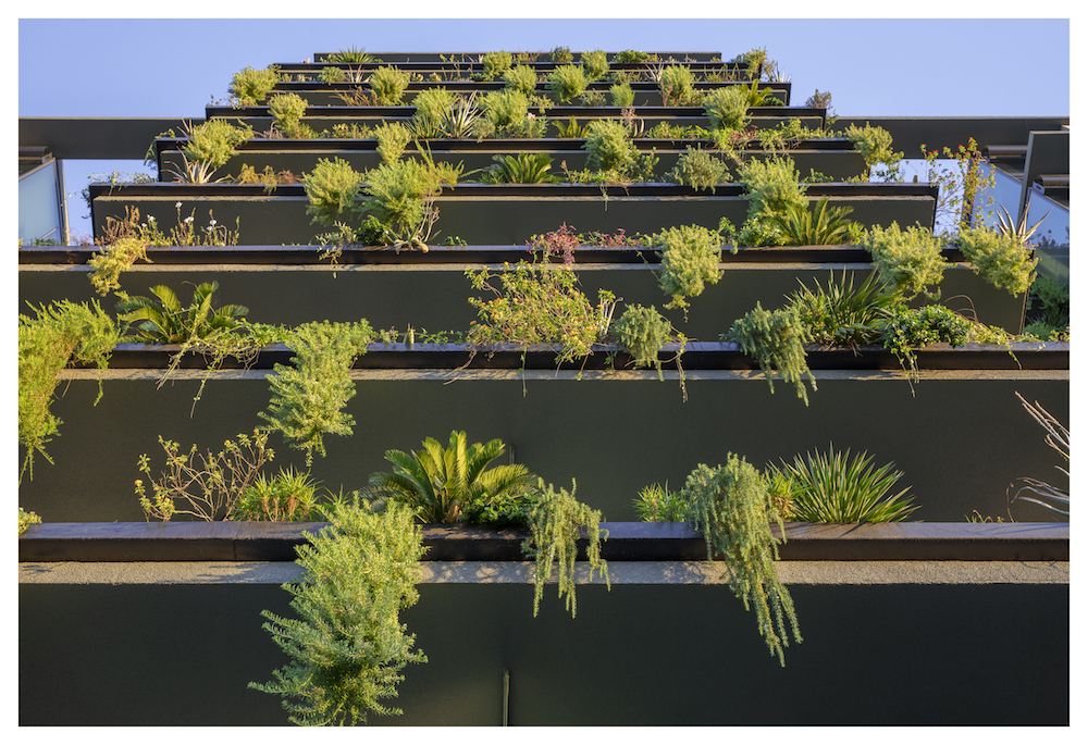 Our signature vertical landscaping system at Optima Kierland Center.