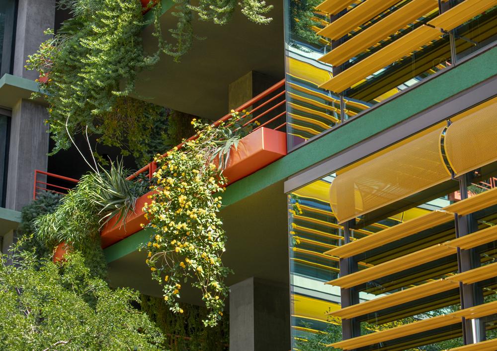 Terrace gardening at Optima Sonoran Village