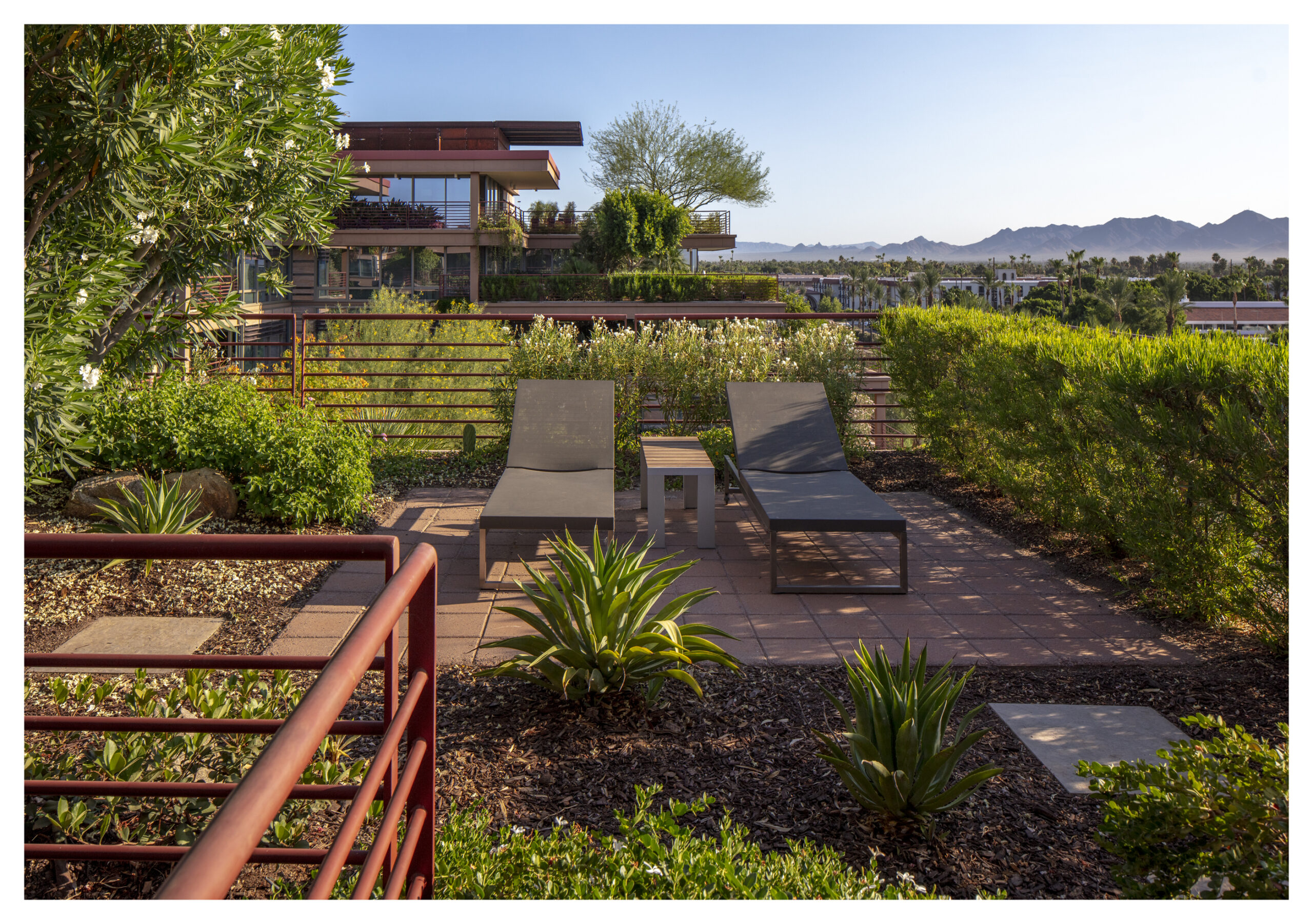 The green roof at Camelview Village