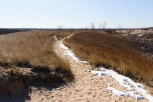 Image of a trail at Indiana Dunes National Park with snow covering part of the sand.